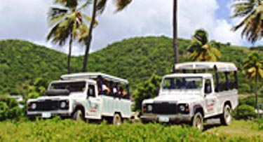 Island Safari Tour
