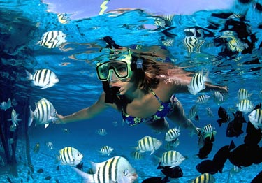 Reef Snorkeling at Maroma Adventures