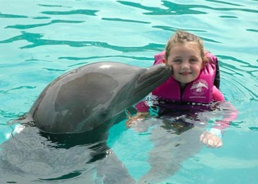 Ocean World Dolphin Swim