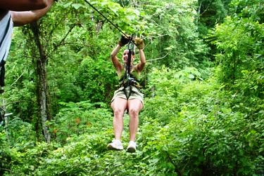 Forest Canopy Exploration Tour​